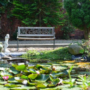 Galerie - Teich mit Antiker Bank auf dem Landhof